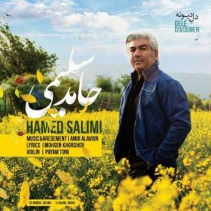 Hamed Salimi – Dele Divooneh
