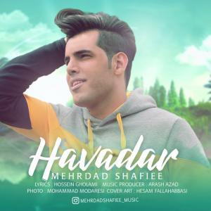 Mehrdad Shafiee – Havadar