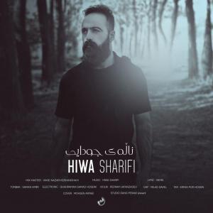 Hiwa Sharifi – Naley Jodaei