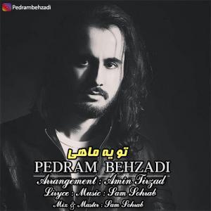 Pedram Behzadi – To Ye Mahi