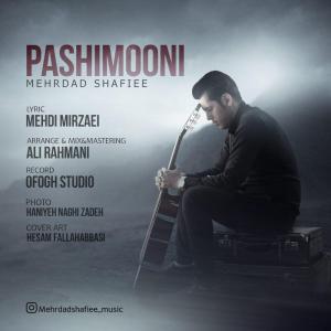 Mehrdad Shafiee – Pashimooni