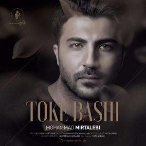 Mohammad Mirtalebi – Toke Bashi