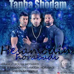Hesamodin Horabadi – Tanha Shodam