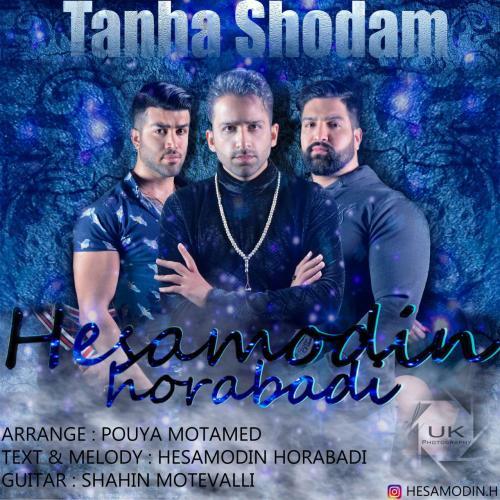 دانلود آهنگ حسام الدین حرآبادی تنها شدم