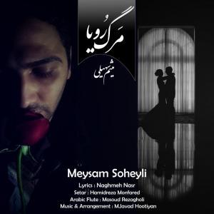 Meysam Soheyli – Marge Roya