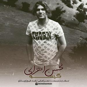 Mohsen Ahrabi – Gisu