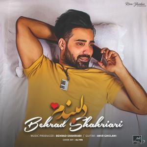 Behrad Shahriari – Delbandam