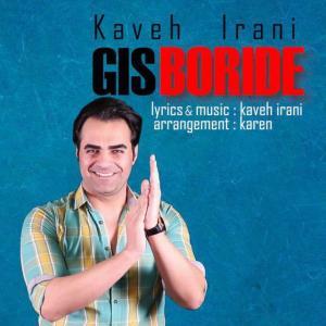 Kaveh Irani – Gis Boride