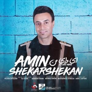 Amin ShekarShekan – Ey Vaye Man