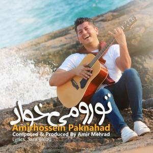 Amirhossein Paknahad – Toro Mikhad