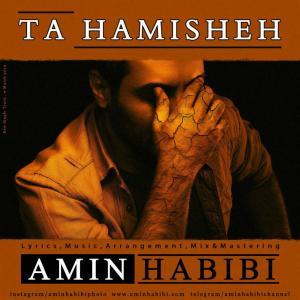Amin Habibi – Ta Hamisheh