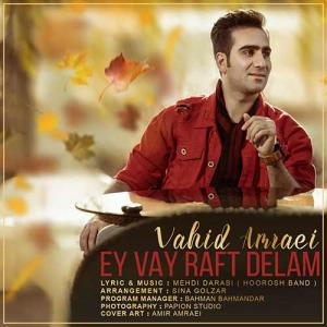 Vahid Amraei – Ey Vay Raft Delam