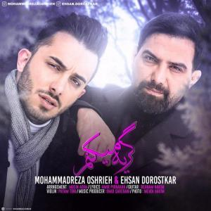 Mohammad Reza Oshrieh And Ehsan Dorostkar – Geryeh Mikonam