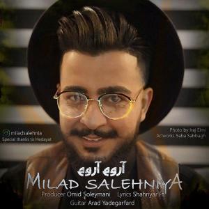 Milad Salehniya – Aroum Aroum