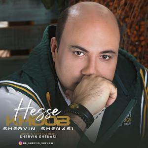 Shervin Shenasi – Hesse Khoob