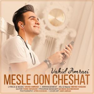 Vahid Amraei – Mesle oon Cheshat