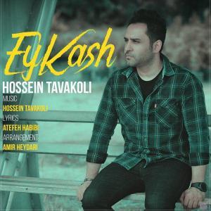 Hossein Tavakoli – Ey Kash