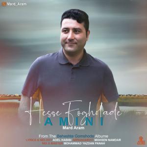 Amini – Hesse Fogholade
