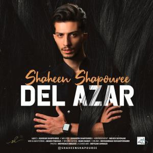 Shaheen Shapouree – Del Azar (Vexatious)