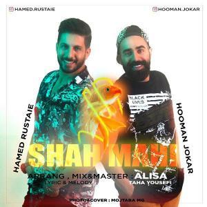 Hamed Rustaie & Hooman Jokar – Shah Mahi