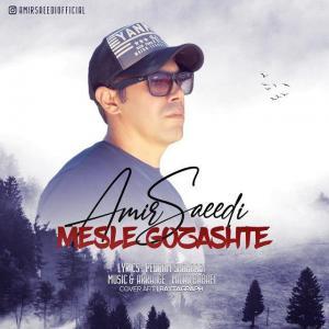 Amir Saeedi – Mesle Gozashte