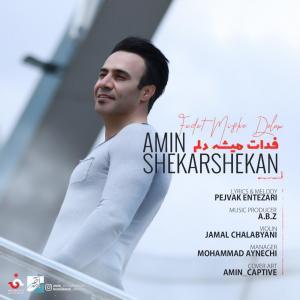 Amin Shekarshekan – Fadat Mishe Delam