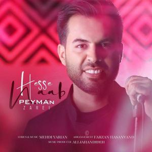 Peyman Zarei – Hesse Naab
