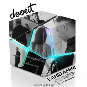 Vahid Amini – Doorit
