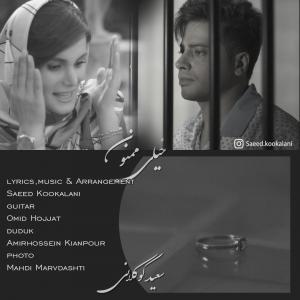 Saeed Kookalani – Kheyli Mamnoon