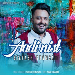 Siavash Ghamsari – Aadi Nist