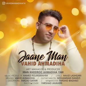 Vahid Ahmadiha – Jane Man