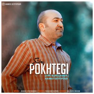 Hamed Seyfipour – Pokhtegi