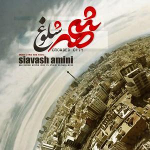 Siavash Amini – Shahre Sholoogh