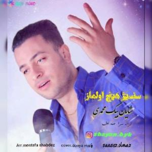 Shayan Begmohammadi – Sansiz Hech Olmaz