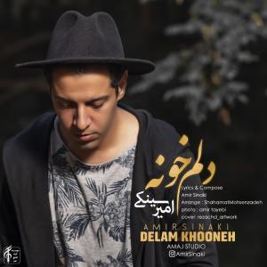 Amir Sinaki – Delam Khooneh