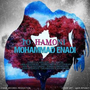 Mohammad Enadi – To Hamoni