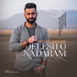 Mehdi Asgari – Delesho Nadaram