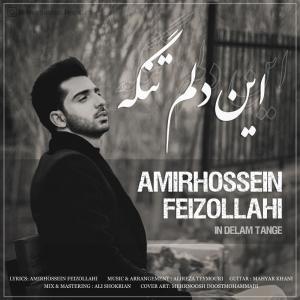 Amirhossein Feizollahi – In Delam Tange