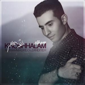MohammadReza Zandiyeh Khoshhalam