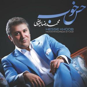 Mohammadreza Eyvazi Hesse Khoob
