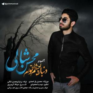 Mohsen Shali Donyami