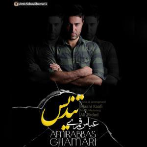 Amir Abbas Ghamari Divoone