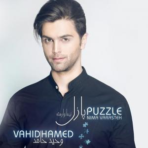 Vahid Hamed Puzzle