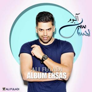 Ali Fuladi Taghdir