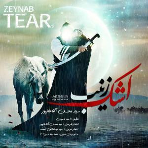 Mohsen Aghajanpour Zoljanah