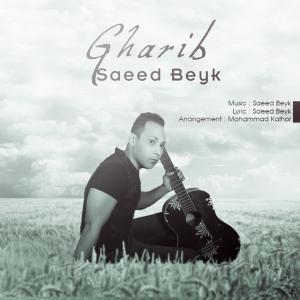 Saeed Beyk Gharib