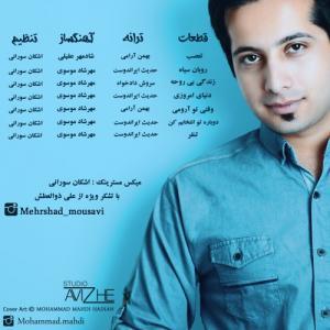 Mehrshad Mousavi Robane Siyah