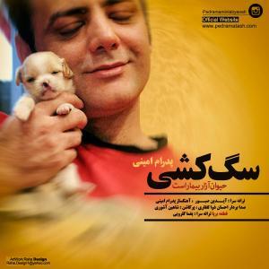 Pedram Amini Faghat Ye Guitar