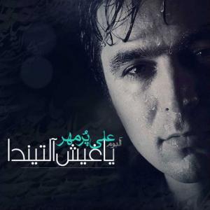 Ali Pormehr Bayram Galdi