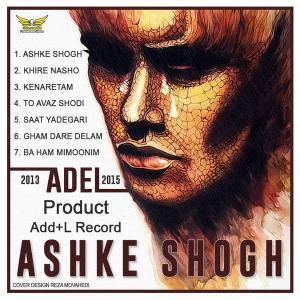 Adel Khire Nasho